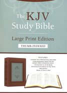 KJV Study Bible Large Print Indexed Teal Inlay (Red Letter Edition) Imitation Leather