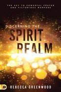Discerning the Spirit Realm eBook