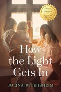 How the Light Gets in eBook