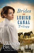 Brides of Lehigh Canal Trilogy eBook