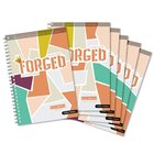 Identity (Small Group 5 Pack) (#02 in Forged Faith Refined Preteen Bible Study Series) Spiral