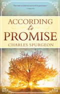 According to Promise Paperback