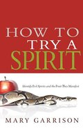 How to Try a Spirit Paperback