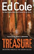 Treasure: Uncovering Principles That Govern Success Paperback