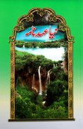 Urdu New Testament Traditional Translation Paperback