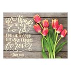 Tea Towel Microfibre Tulips (Give Thanks- Psalm 107: 1) Homeware
