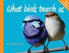 What Birds Teach Us (Second Edition) Paperback