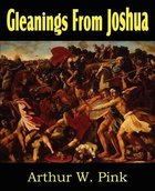 Gleanings From Joshua Paperback