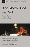 The Glory of God and Paul: Text, Themes and Theology (New Studies In Biblical Theology Series) Paperback