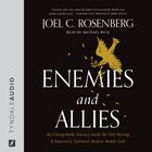 Enemies and Allies eAudio