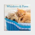 2022 Wall Calendar: Whiskers & Paws Calendar