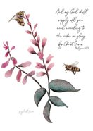 Blank (Native Bees) Cards